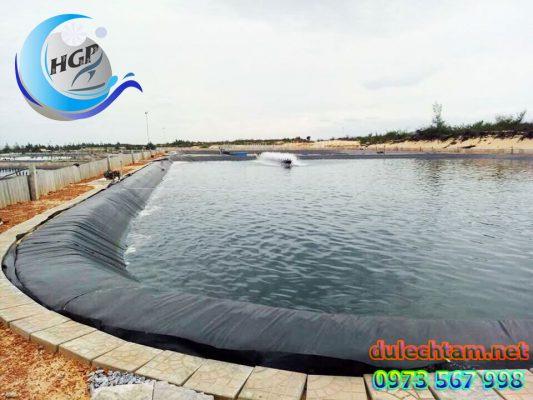 Cung Cấp Bạt Nhựa HDPE Lót Ao Hồ Chứa Nước Tưới Cây Nuôi Cá Tại Gia Lai