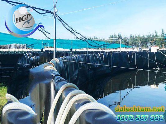 Báo Gía Bạt HDPE Lót Ao Hồ Chứa Nước Nuôi Tôm Cá Gía Rẻ Tại Bình Định