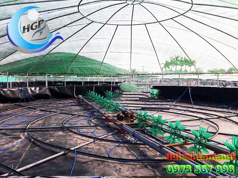 Bảng Giá Bạt Nhựa HDPE Lót Ao Hồ Chứa Nước Nuôi Cá Tôm