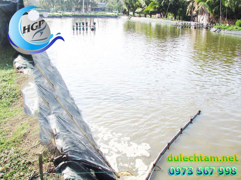 Bạt Nhựa HDPE Lót Ao Hồ Chứa Nước Nuôi Tôm Cá