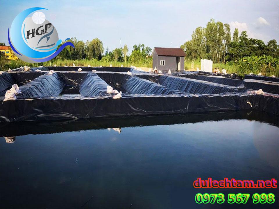 Báo Gía Bạt HDPE Lót Ao Hồ Chứa Nước Nuôi Tôm Cá Gía Rẻ Tại Sóc Trăng