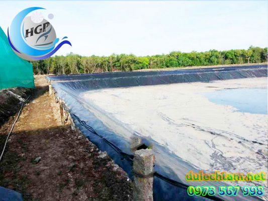 Báo Gía Bạt HDPE Lót Ao Hồ Chứa Nước Nuôi Cá Gía Rẻ Tại Củ Chi