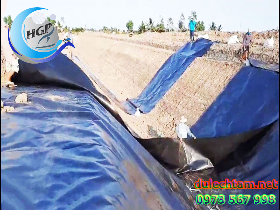 Báo Gía Bạt HDPE Lót Ao Hồ Chứa Nước Nuôi Cá Gía Rẻ Tại Bình Phước