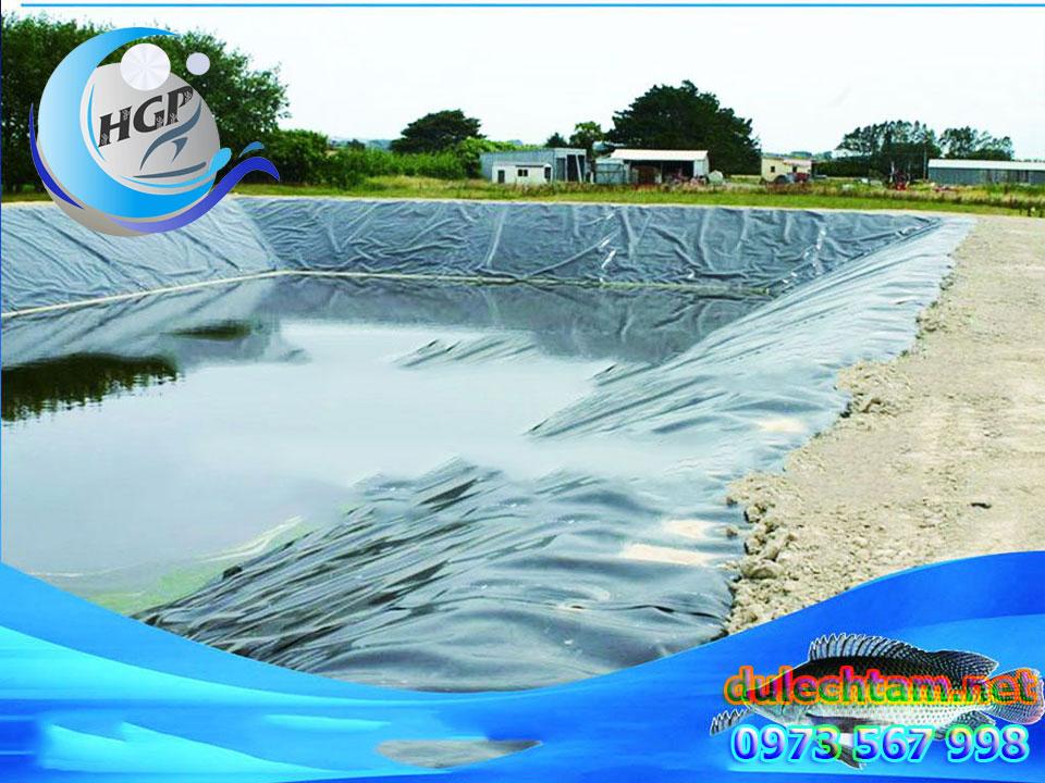 Bạt HDPE Lót Ao Hồ Chứa Nước Nuôi Cá Gía Rẻ Tại Đồng Tháp